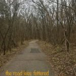 the road less fettered (#12)